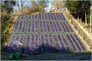 防草発電シート設置写真⑩